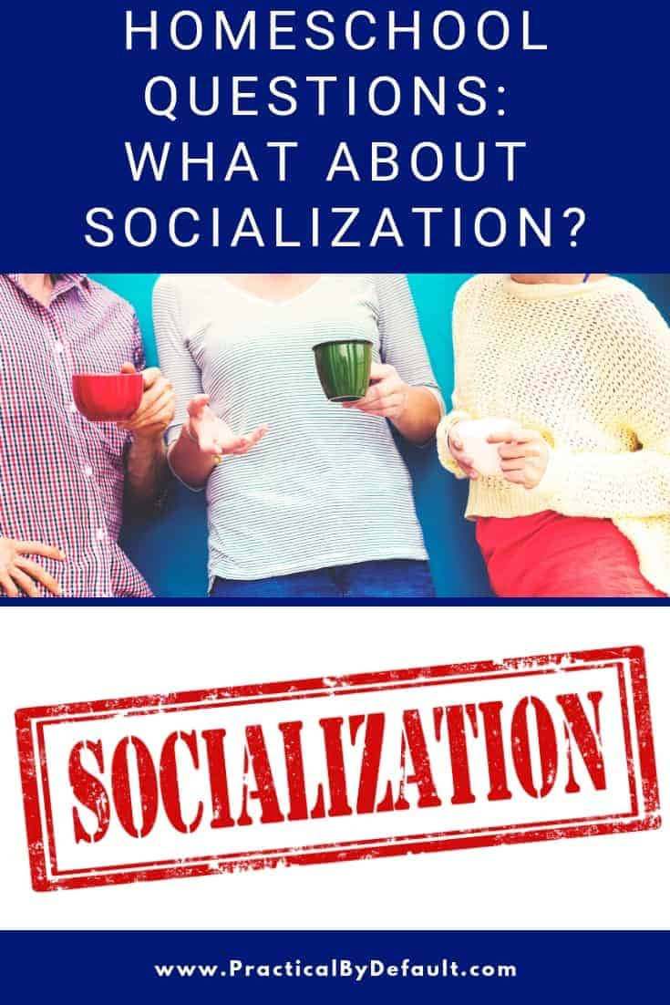 Why I don't worry about socialization in my homeschool and what we really would like to say to those that ask. #socialization #homeschool