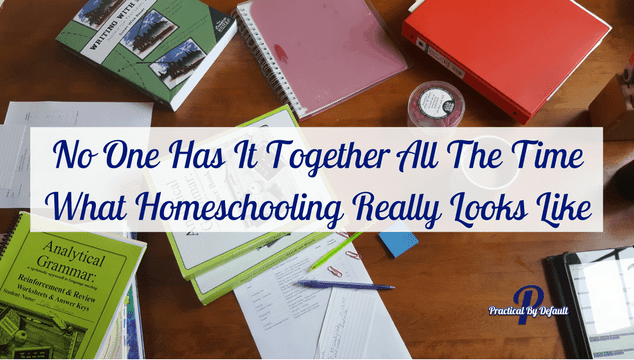 No working homeschool mom is perfect. Not you, not me. .This is what our homeschool looks like