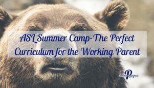 ASL Summer Camp-The Perfect Curriculum for the Working Parent