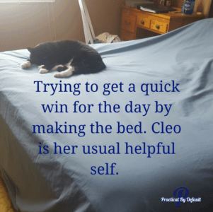 Everyone needs a quick win, making the bed is usually mine. Thanks Cleo for helping.