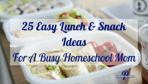 25 Easy Lunch & Snack Ideas For A Busy Homeschool Mom