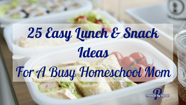 Great lunch and snack ideas for the busy working homeschool mom!