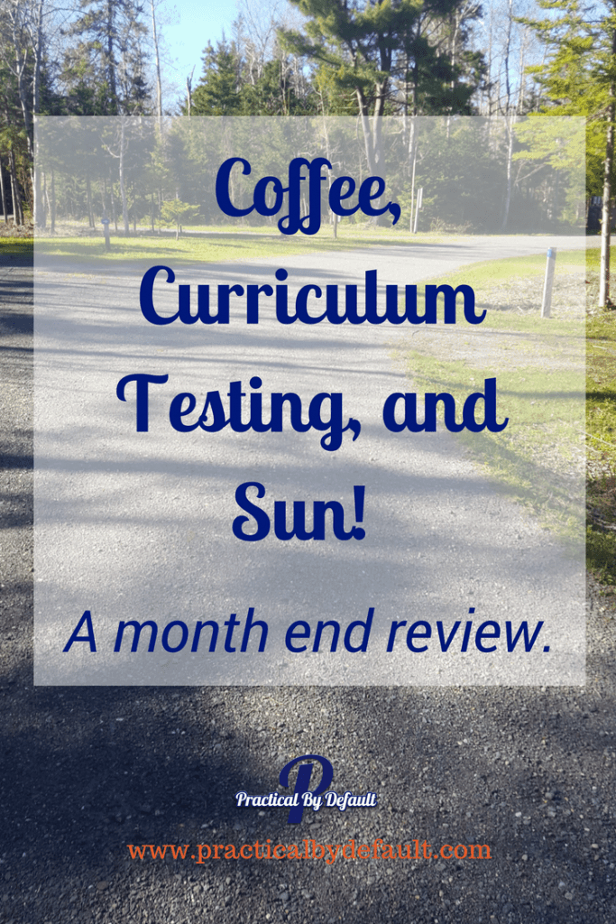 Are you wondering what curriculum we are testing out? Click through to read!