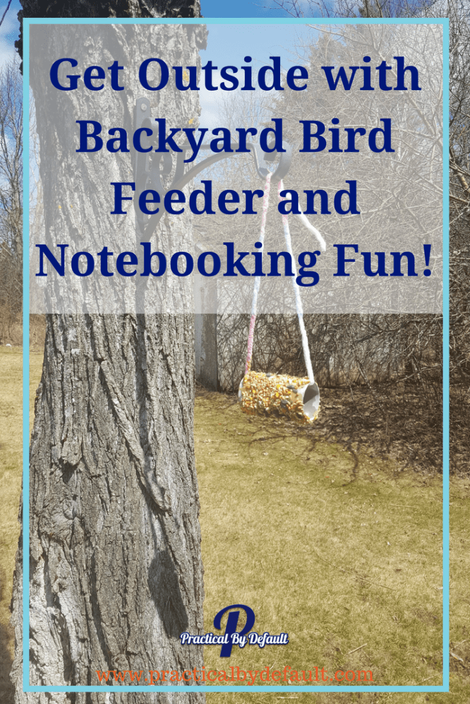 Are you wondering how to learn more about the birds in your backyard? Get Outside with Backyard Bird Feeder and Notebooking Fun!