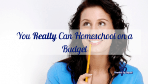 You REALLY Can Homeschool on a Budget