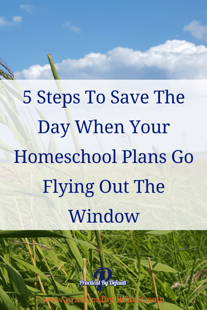 Are you having a day where everything you had planned is now pointless? 5 Steps To Save The Day When Your Homeschool Plans Go Flying Out The Window