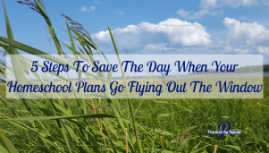 5 Steps To Save The Day When Your Homeschool Plans Go Flying Out The Window