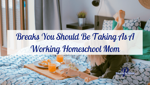 As the holiday approaches life can get pretty crazy. Homeschooling, working, life. It can get to be just too much. Check out these breaks you should be taking.