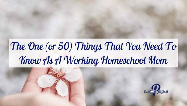 The One (or 50) Things That You Need To Know As A Working Homeschool Mom